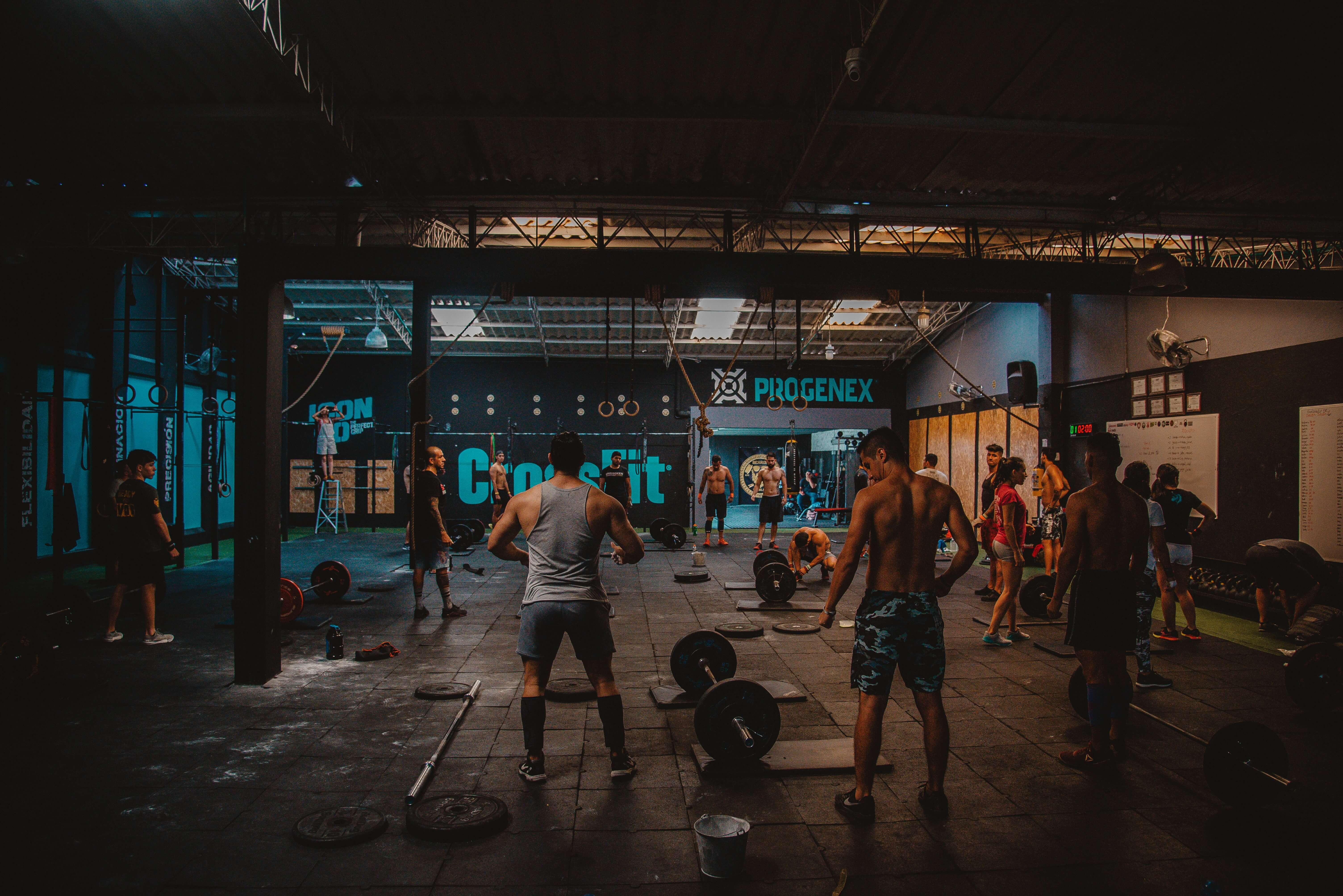 usuarios gym